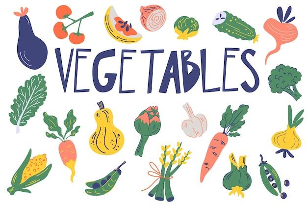 野菜セット。健康食品。白い背景で隔離の手描きの新鮮なおいしい野菜。ビーガンと有機食品。漫画のベクトルイラスト。