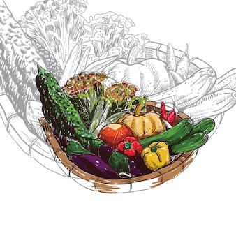 野菜バスケットベクトル