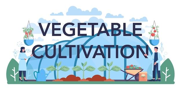 농업의 야채 재배 인쇄상의 헤더 아이디어