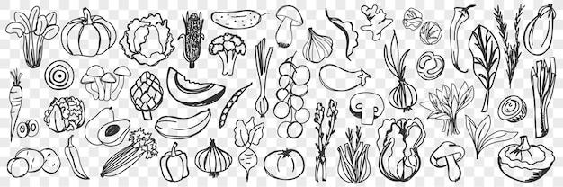 Vegetables doodle set.