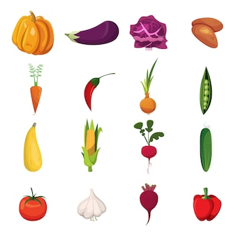 Vegetables elements set