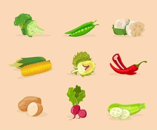 野菜フラットイラストセット。有機ビタミン食品は、ベージュ色の背景にクリップアートパックを分離しました。ブロッコリー、トウモロコシ、ジャガイモのアイコンのコレクション。自然野菜漫画デザイン要素
