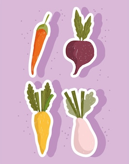 Vegetables fresh food carrots onion and beetroot icon set illustration