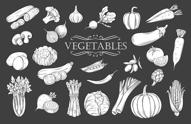 야채 문양 격리 아이콘을 설정합니다. 검은 그림에 흰색 농장 채식주의 제품 레스토랑 메뉴, 시장 레이블 및 상점.