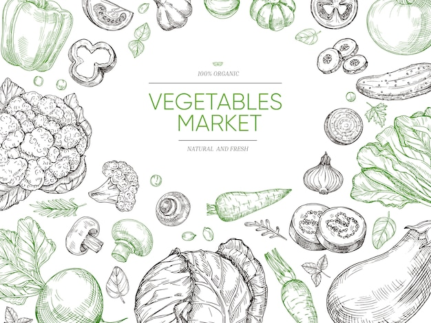 Vegetables hand drawn background. organic food vegetable set. sketch vegan menu
