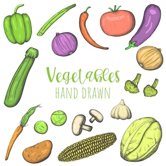 Vegetables hand drawn colored vector set, isolated sketched veggies.