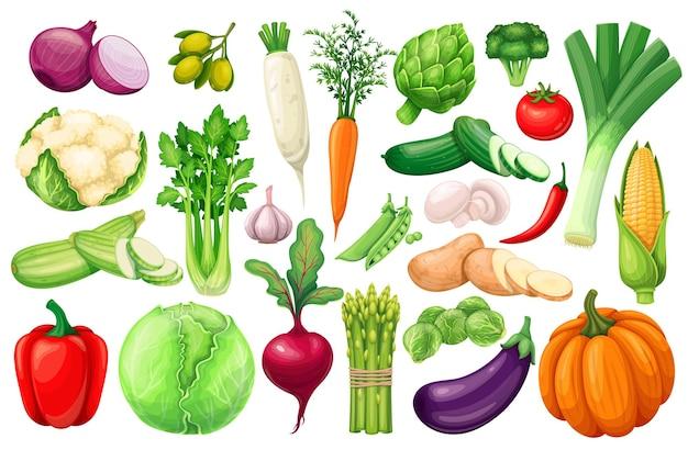 Vegetables icons set in cartoon style. farm product of artichoke, leek, corn, garlic, cucumber, pepper, onion, celery, asparagus, cabbage