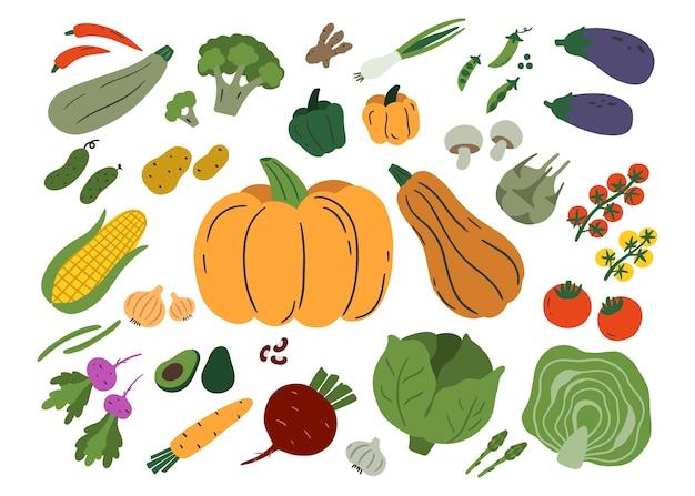 白い背景で隔離の野菜。ズッキーニ、シャンピニオン、ナス、ジャガイモ、カボチャ、トマトなどのセット。フラットイラスト。