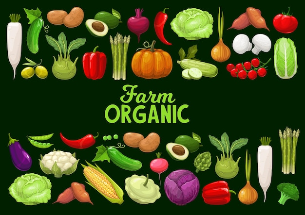 Vegetables, organic farm veggies and greenery. corn, tomato, and squash, cauliflower, broccoli, pumpkin and cabbage, green peas. farm market production, ecological organic food cartoon poster