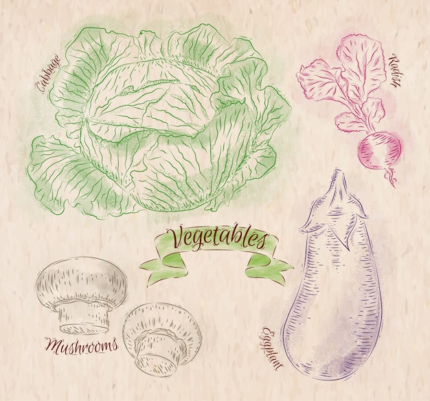 Vegetables painted in different colors in a country style cabbage, eggplant, radishes
