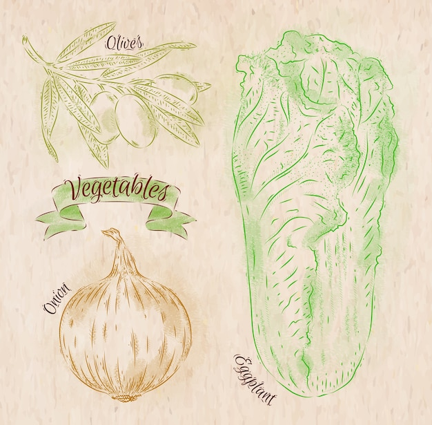 Vegetables painted in different colors in a country style onion, napa cabbage, olives