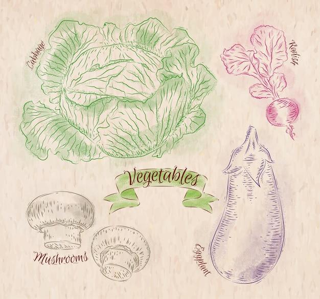 カントリースタイルのキャベツ、ナス、ラディッシュの色で塗られた野菜