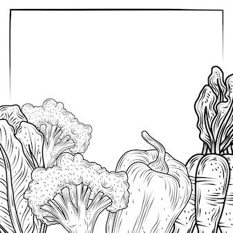 야채 고추 당근 브로콜리와 양상추 음식 신선한 유기농, 손으로 그린 스타일