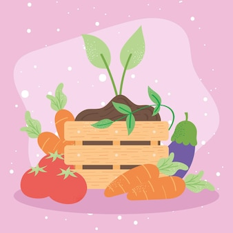 Vegetables and plant