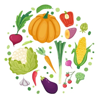 Vegetables in roundhand drawn vector template