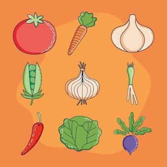 Овощи на оранжевом фоне