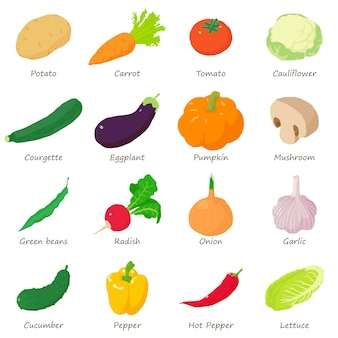 Vegetables signed names icons set. isometric illustration of 16 vegetables signed names vector icons for web