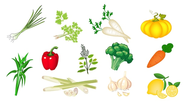 Vegetables and spices include lemongrass, coriander, morning glory, paprika, garlic, basil