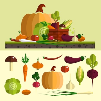 Vegetables vector set in flat style. isolated food design elements, pumpkin, carrot, beet root, cabbage,  garlic, egg plant. healthy food and organic farm.