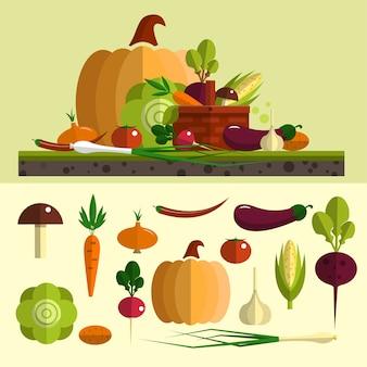 Овощи векторный набор в плоский. изолированные элементы дизайна пищи, тыква, морковь, свекла, капуста, чеснок, баклажаны. здоровая пища и органическая ферма.