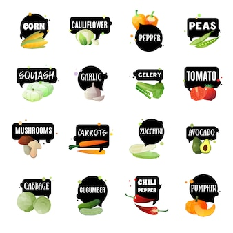 Vegetables with labels set