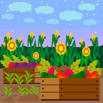 Vegetables in wooden crate vector illustration