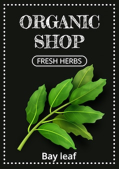 Vertical banner with a realistic bay leaf on coated chalk.