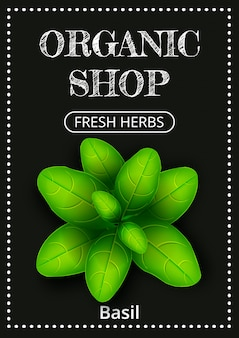 Vertical banner with a realistic green basil on coated chalk.