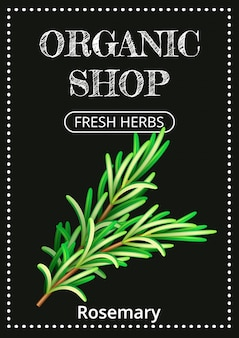 Vertical banner with a realistic rosemary on coated chalk.