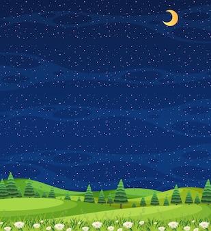 밤에 숲보기와 빈 하늘 수직 자연 장면 또는 풍경 시골
