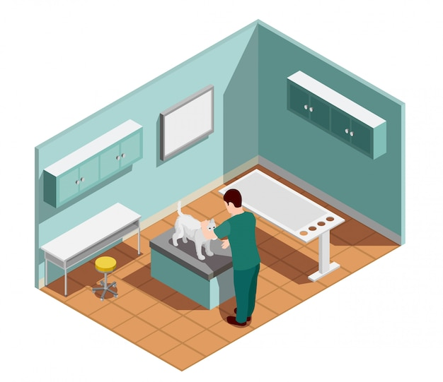 Vet clinic isometric composition