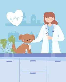 개를 검사하는 수의사