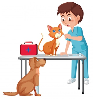 A vet taking care of pet