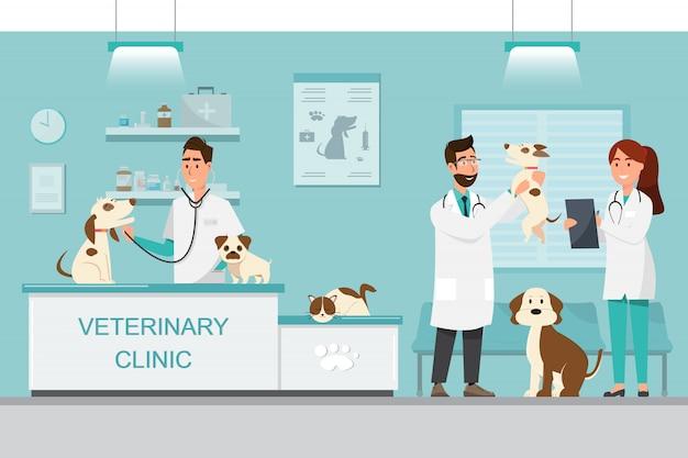 Ветеринар и врач с собакой и кошкой на прилавке в ветеринарной клинике