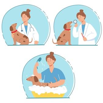 ペットクリニックの獣医と犬。獣医クリニックのサービス。健康診断、歯のクリーニング、毛皮の洗浄と世話。