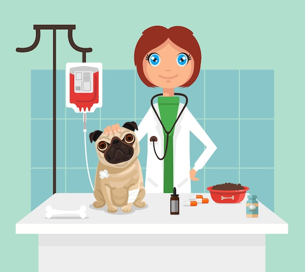Veterinarian flat illustration