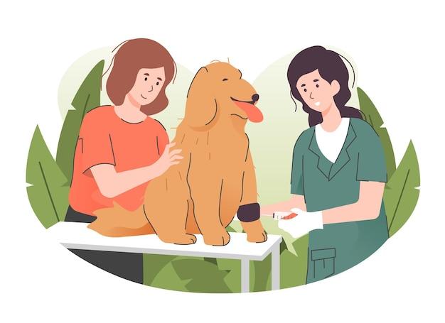 Ветеринар делает инъекцию собаке в ветеринарной клинике
