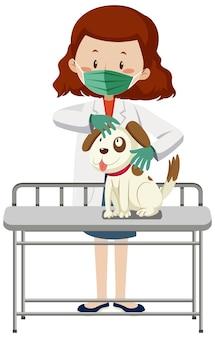 Ветеринарный врач в маске и осматривает положение собаки