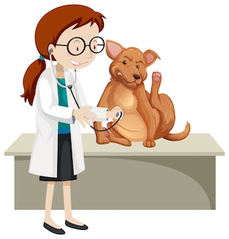 Veterinarian with sick animal