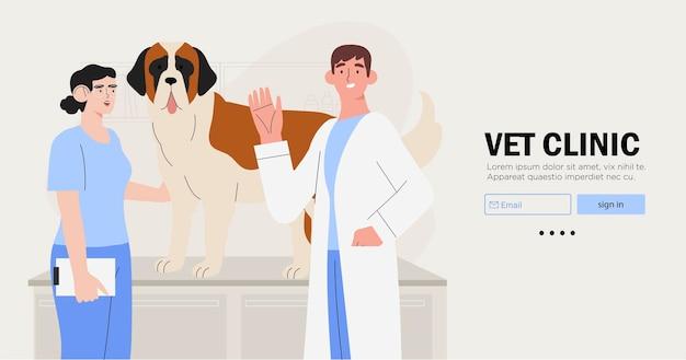 Врач ветеринаров и медсестра осматривают собаку.