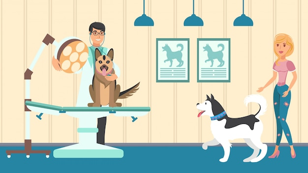 Veterinary appointment vector flat illustration
