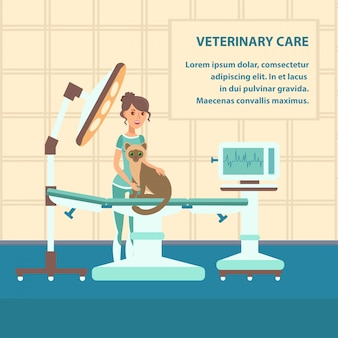 Veterinary care vector web banner color template