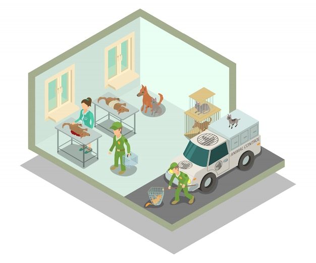 Veterinary clinic concept scene