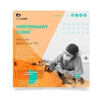Veterinary clinic and healthy pets square flyer