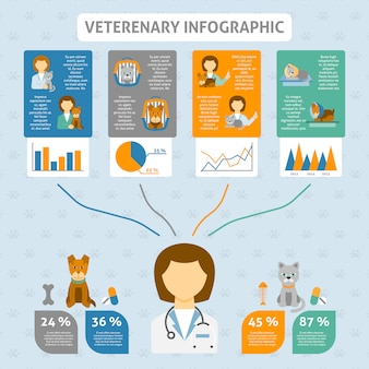 Veterinary clinic infographic chart banner