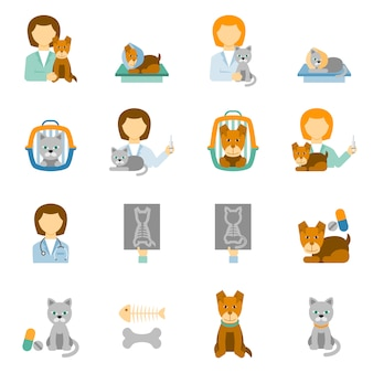 Veterinary clinic practice flat icons set