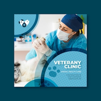 Veterinary flyer template concept