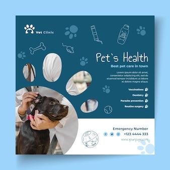 Шаблон ветеринарного флаера с фото