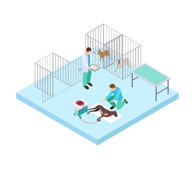 Концепция ветеринарной больницы. ветеринары лечат собаку. изометрические домашние животные в клинике. векторная иллюстрация интерьера ветеринарной больницы. ветеринарный уход, лечение и ветеринария