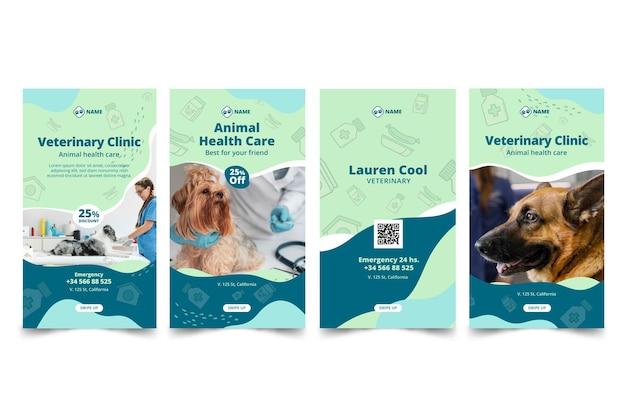 Veterinary instagram storiestemplate Free Vector